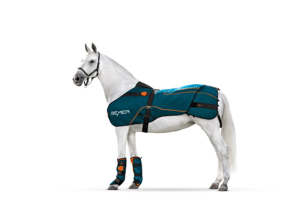 Bemer Horse set compleet